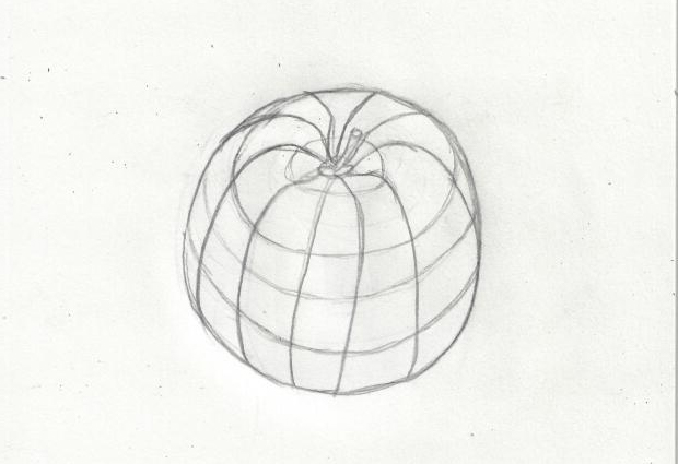 cross contour drawing of an apple